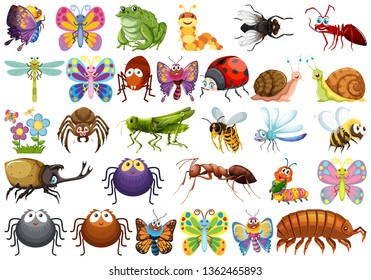 Set of insect character illustration