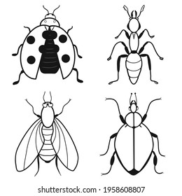 Set of insects icons: ladybug, ant, fly, potato beetle. Contour sketch. Idea for decors, logo, patterns, papers, covers, gifts, summer and autumn garden, insect natural themes. Isolated vector art.