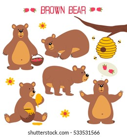 set of isolated brown bear - vector illustration, eps
