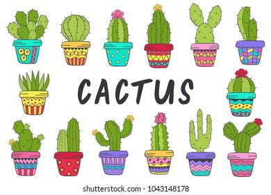 set of isolated cactus in color - vector illustration, eps