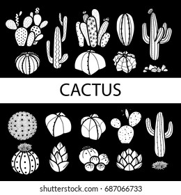 Set of isolated cactus and succulents in white plane. Hand drawn style. Vector illustration.