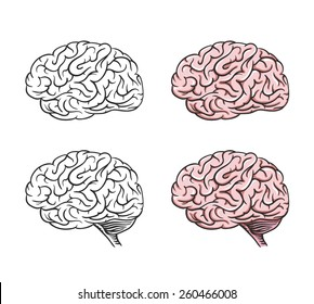 Set of isolated cartoon brains, graphical.