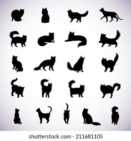 Set of isolated cat silhouettes in various poses