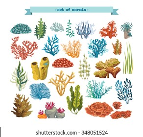 Set of isolated colorful corals and algae on a white background. Vector underwater flora and fauna.