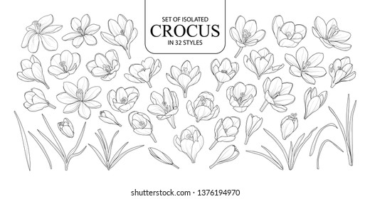 Set of isolated Crocus in 32 styles. Cute hand drawn flower vector illustration in black outline and white plane on white background.