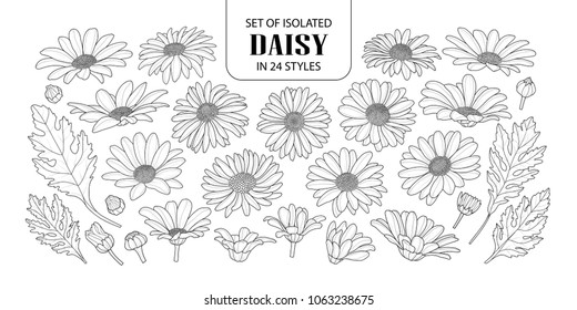Set of isolated daisy in 24 styles. Cute hand drawn flower vector illustration in black outline and white plane on white background.