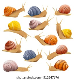 Set of isolated drawn snails of different behavior shell colours in realistic style on blank background vector illustration