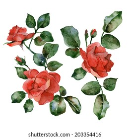 Set of isolated elements of red flowers roses. Vector illustration