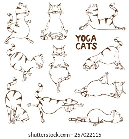 Set of isolated funny sketch cats icons doing yoga position