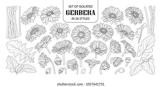 Set of isolated gerbera in 26 styles. Cute hand drawn flower vector illustration in black outline and white plane on white background.