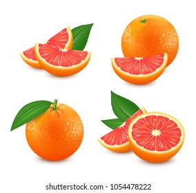 Set of isolated grapefruits. Realistic citrus image. 3d vector