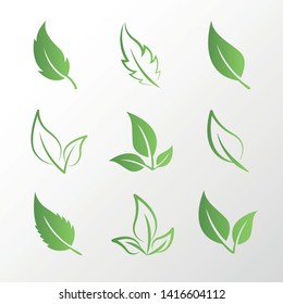 Set of isolated green leaves of different color and style. Transparent and colored leaves, contour. One, two, three smooth sheets and one, two, three sheets with burrs.