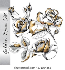 Set with isolated image of a gold roses flowers. Vector illustration.