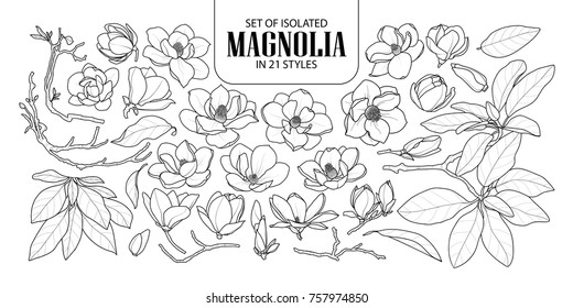 Set of isolated magnolia in 21 styles. Cute hand drawn flower vector illustration in black outline and white plane on white background.