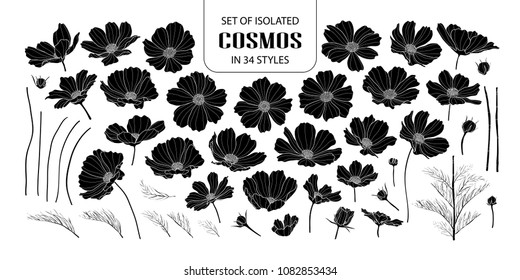 Set of isolated silhouette cosmos in 34 styles. Cute hand drawn flower vector illustration in white outline and black plane on white background.