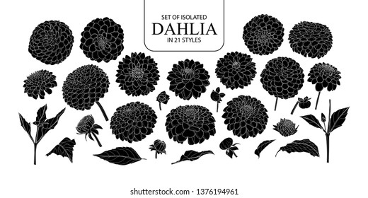 Set of isolated silhouette Dahlia in 21 styles. Cute hand drawn flower vector illustration in white outline and black plane on white background.