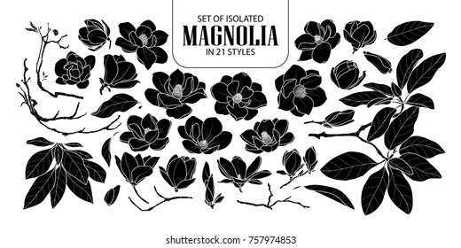 Set of isolated silhouette magnolia in 21 styles. Cute hand drawn flower vector illustration in white outline and black plane on black background.