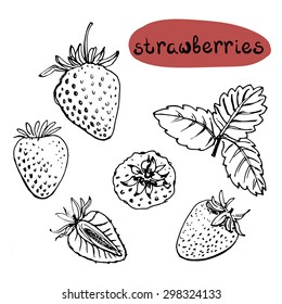 Set of isolated sketchy style fruits and berries/ Doodle fruits in black and white/ Hand drawn vector illustration