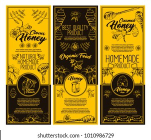 Set of isolated stickers or labels for clover honey bottle. Flyer with honey bee and special spoon, sunflower and hive, honeycomb and bumblebee. Healthy nutrition, summer food and farming theme