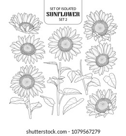 Set of isolated sunflower set 2. Cute hand drawn vector illustration in black outline and white plane on white background.