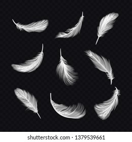 Set of isolated white lightweight feather on transparent, realistic falling bird fluff. Angel or goose, dove and swan twirled fur. Collection of soft fur, quill symbol. Icons for nature.