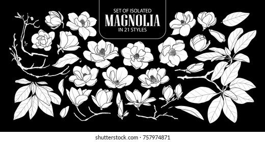 Set of isolated white silhouette magnolia in 21 styles. Cute hand drawn flower vector illustration in white plane and no outline on black background.