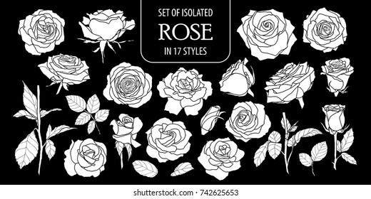 Set of isolated white silhouette rose in 17 styles .Cute hand drawn flower vector illustration in white plane and no outline on black background.
