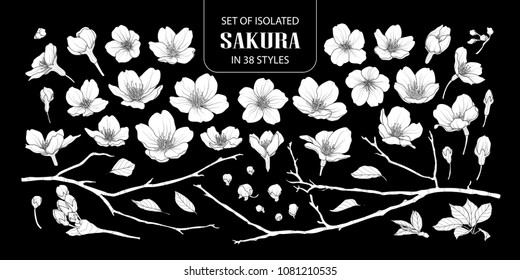 Set of isolated white silhouette sakura in 38 styles. Cute hand drawn flower vector illustration in white plane without outline on black background.