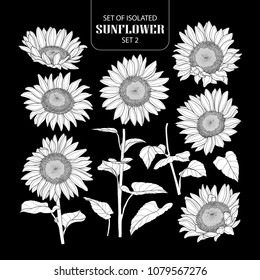 Set of isolated white silhouette sunflower set 2. Cute hand drawn vector illustration in white plane without outline on black background.
