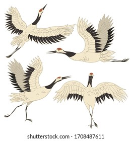 Set of Japanese crane birds isolated on a white background. Vector graphics.