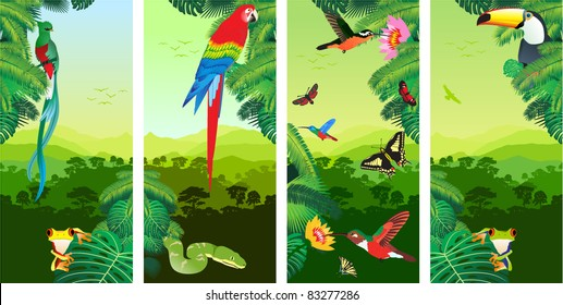 Set of Jungle Banners with Frog, Toucan, quetzal, humming-birds, butterflies , Ara and Green Snake