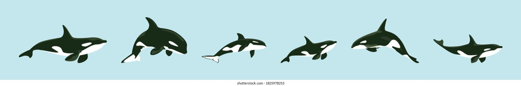 set of killer whale cartoon icon design template with various models. vector illustration isolated on blue background