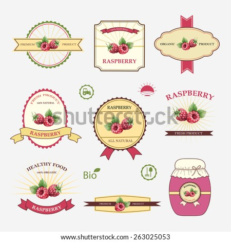 Set Of Label Design And Templates Vector Illustration