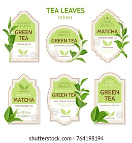 Set of labels of various shape with brand identity and realistic tea leaves isolated vector illustration