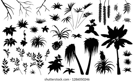 Set laser cutting exotic plants jungle. Silhouette leafs palm and liana. Isolated vector illustration on white background.