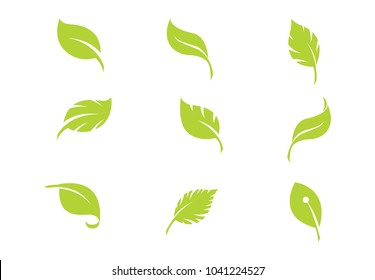 set leaf green vector illustration on background