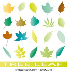 Set of leaf icons vector tree ilustrations