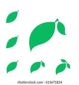 Set of Leaf Vector Icons or Elements for Eco and Bio Logos. Various Shapes of Leaves Isolated