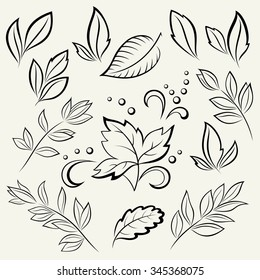 Set Leaves, Black Contour Pictograms Isolated on White Background. Vector