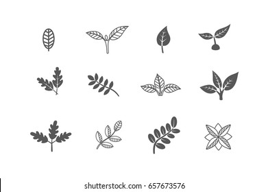 Set of leaves design elements. Sprout new life vector logo