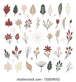 Set of leaves and plants, isolated on white background