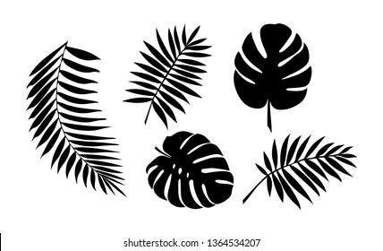 set of leaves of tropical plants. Botanical set, flat design