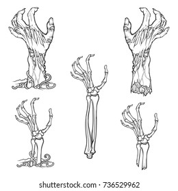 Set of lifelike depicted rotting zombie hands and skeleton hands rising from under the ground and torn apart. Linear drawing isolated on white background. EPS10 vector illustration