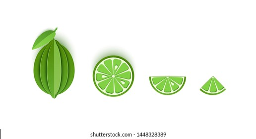 Set of lime sliced paper citrus fruit sliced whole, triangular and round slices, design for any purpose. Summer green lemon juicy food. Vector card 3d illustration. Tropical papercraft layers fruit.