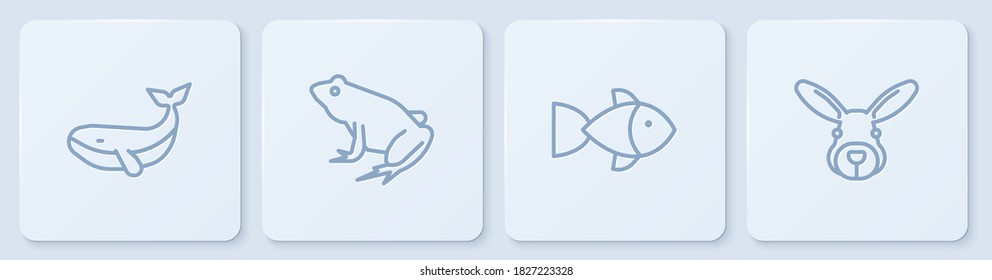 Set line Whale, Fish, Frog and Rabbit head. White square button. Vector