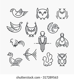 Set of linear design birds, isolated line symbols. Empty outline objects.
