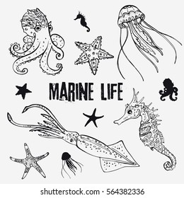 Set of linear marine life in the sketch style: octopus, jellyfish, two starfish, seahorse, squid/Hand drawn the inhabitants of the underwater world