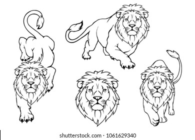 Set of Lion logo.Vector animal lion.King Lion isolated on white background.
