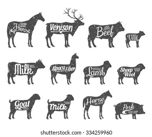 Set of livestock labels templates. Farm animal icons