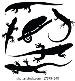 Set of lizards silhouettes, vector illustration